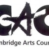 MMVAC Receives Cambridge Arts Council Grant